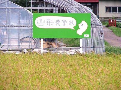【奨学米プロジェクト〜田植えが行われます】:画像