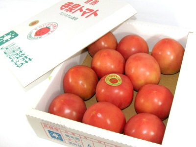 【長井のブランド!『寺泉トマト』】:画像