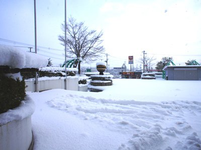 【雪降った〜!】:画像