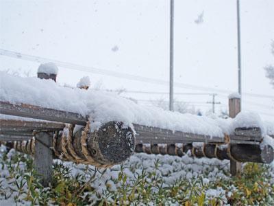 【冬の訪れ】:画像