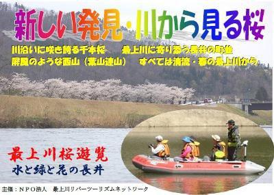 【最上川桜遊覧 〜川から見る桜〜】:画像