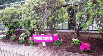 【長井の玄関口を華やかに】:画像
