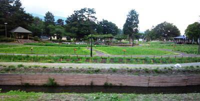 【あやめ公園開園前 いまの様子】:画像