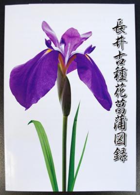 【長井古種花菖蒲図録がリニューアルしました】:画像