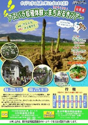 【アスパラ収穫体験×まちあるきツアー】:画像