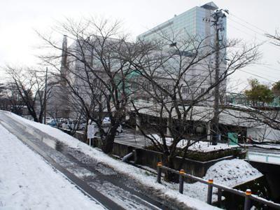 【今シーズン初の雪化粧】:画像