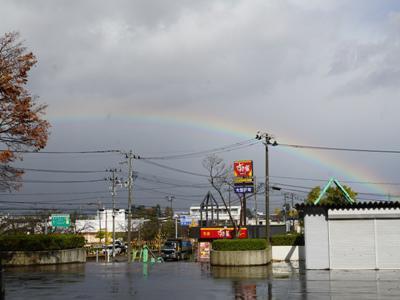 【冷たい秋雨】:画像