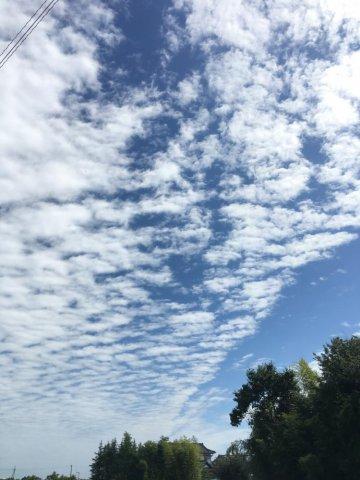 夏と秋のあいだ!:画像