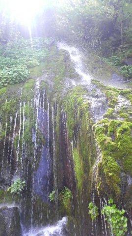 温泉→自噴源泉 水→自前水源 それが標高1,126m:画像