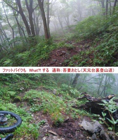 【登山道」新高湯〜天元台 アマくは、ないですよぉ〜♪:画像