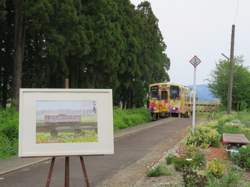 成田界隈探検 いつもの:画像