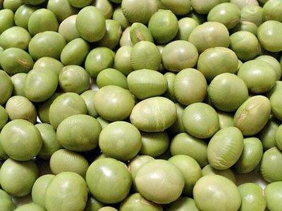 【買】山形県産秘伝豆|30kg〜:画像