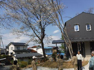 【郡山市富久山・ドミノY邸 】 引渡し日、庭の桜が満開でお出迎え:画像