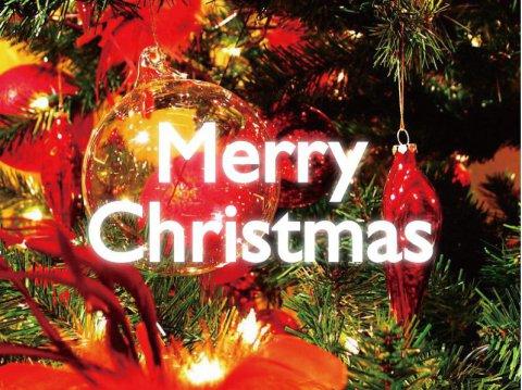 【12/18〜12/25】クリスマスプランの受付を開始しました♪:画像