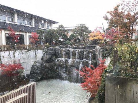 中庭の紅葉と雪:画像