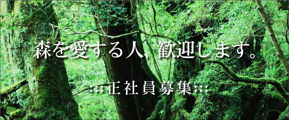 森を愛する人、歓迎します。〜正社員募集
