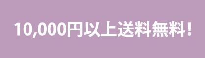 10,000円以上送料無料!