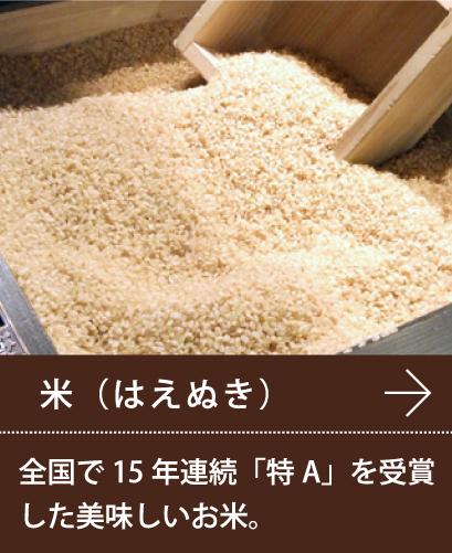米(はえぬき)