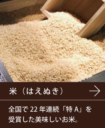 山形の米(はえぬき)