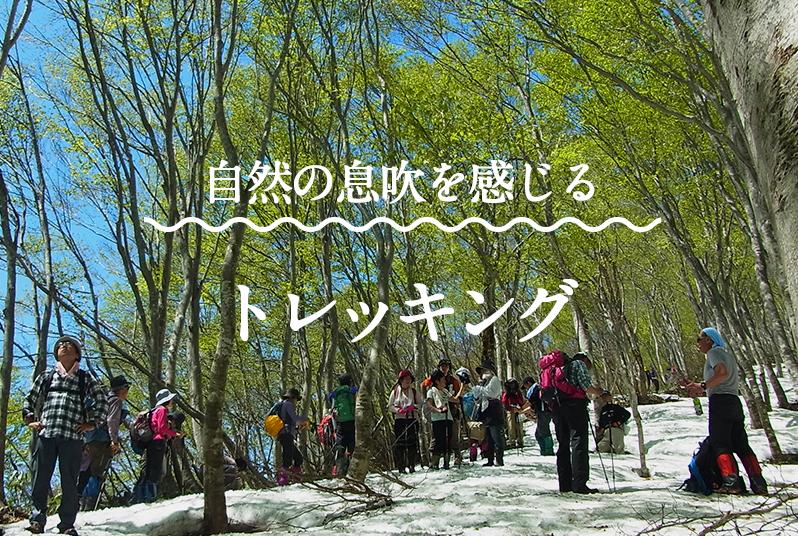 特集|春のトレッキング