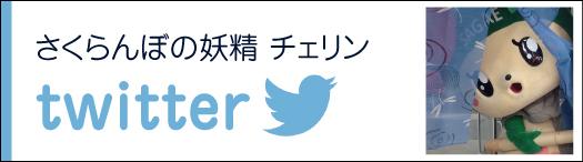 �������ܤ����� �������twitter