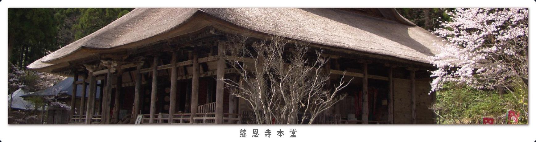 慈恩寺本堂(桜)