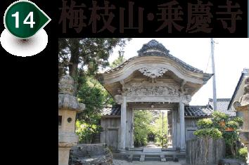 梅樹樹枝山、乗慶寺
