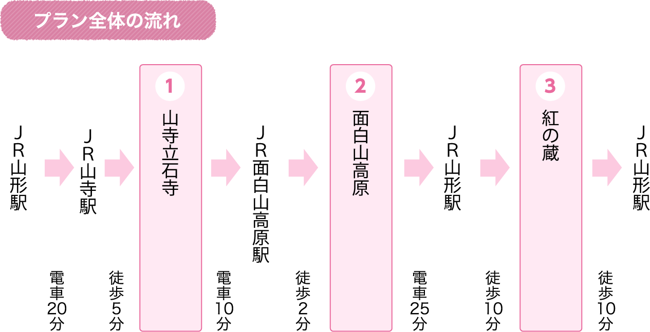 Flow of the whole plan