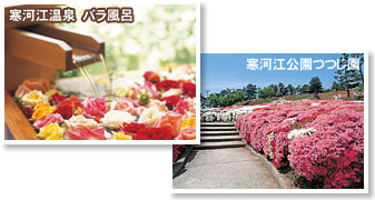 Photograph of Sagae Onsen and Sagae Park azalea garden