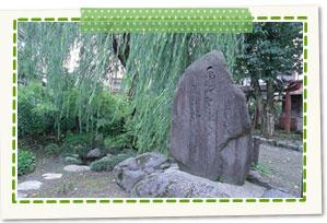 Shimizu of willow