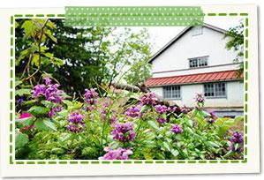 "Shinjo-shi Ecology Garden ""Gensan-no-Mori"" [Forest of Silkworm]"