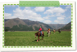 Maemori Highlands (lunch, horseback riding experience)