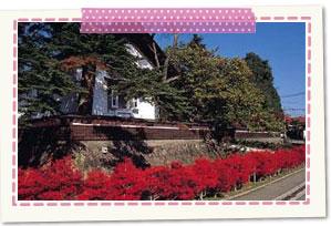 紅花資料館