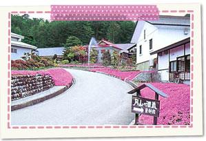 Sake brewery museum Shitara Sake Brewery of Mt. Gassan
