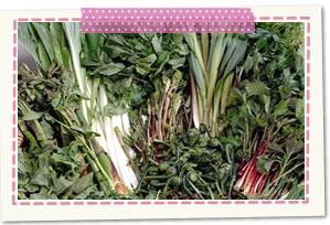 Wild plants dishes Mazawa, Nishikawa-machi