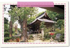若松寺(天童市)