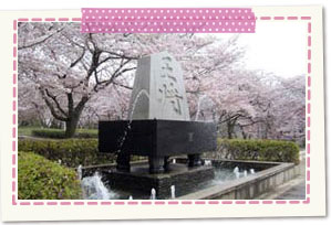 舞鶴山(天童公園)
