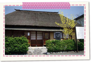 The Dr. Mineichiro Adachi birthplace