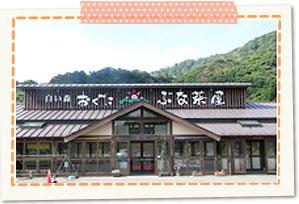 Shiroimori Oguni