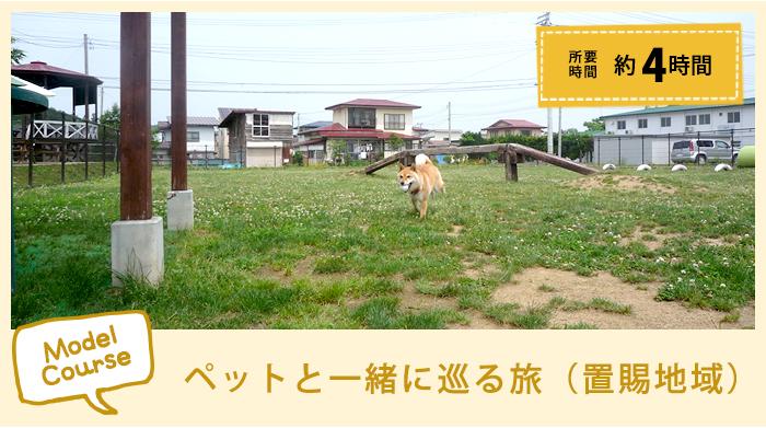 和推荐行程宠物一起循环的旅途(置赐地区)