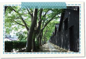 散居倉庫(酒田市)