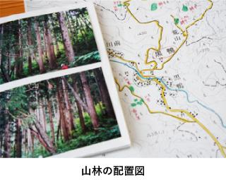 山林の配置図