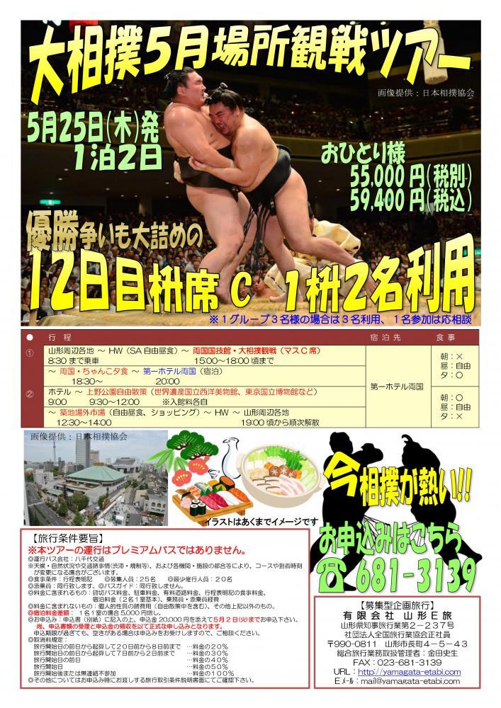 大相撲5月場所観戦ツアー:画像