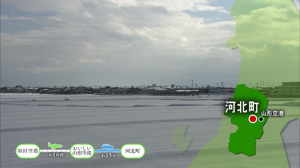 [#1201] Of Yamagata young bird rise; ~ Kahoku-cho, Nakayama-machi, Yamanobe-machi, Kaminoyama-shi (Mar two weeks): Image