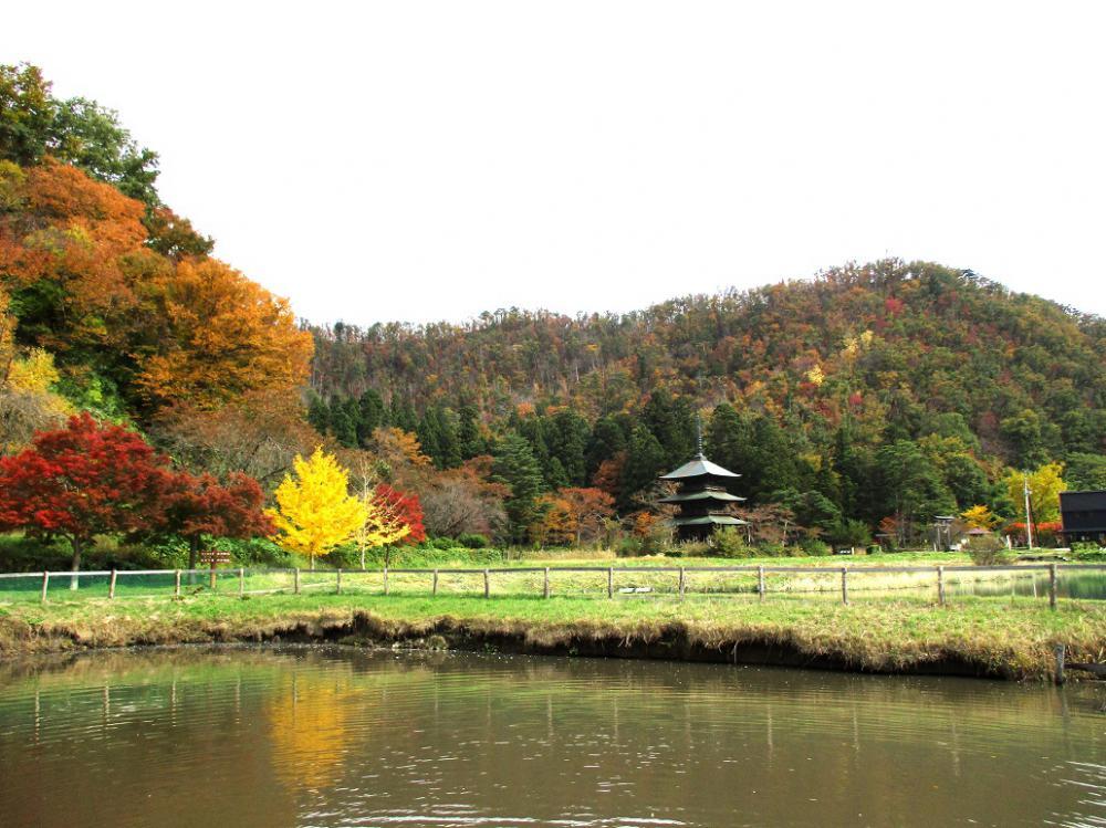安久津八幡神社の紅葉(11/1):画像